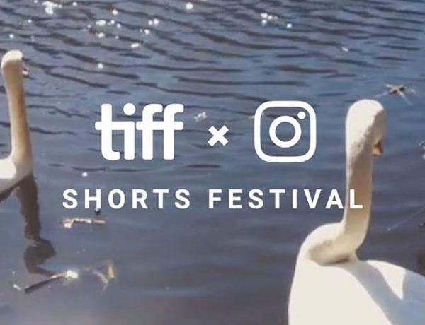 toronto international film festival instagram