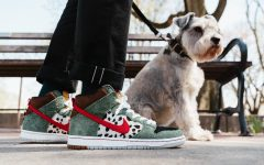 "Nike SB Dunk High ""Walk the Dog (4)"