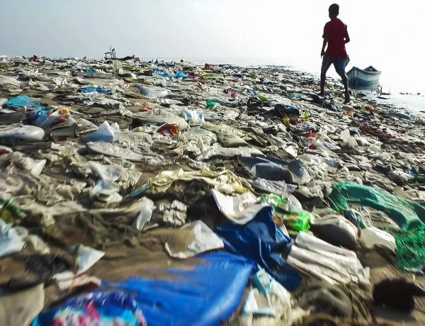 bolsas de plastico medio ambiente