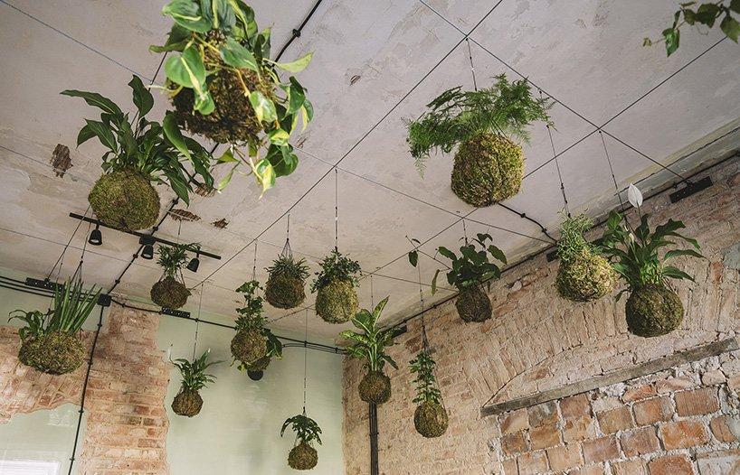 ikea hogar del mañana plantas interior loqueva (10)