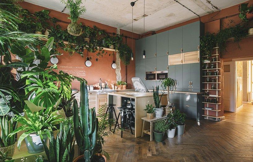 ikea hogar del mañana plantas interior loqueva (2)