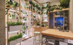 ikea hogar del mañana plantas interior loqueva (6)