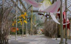 00011muestra-flores-Petrit-Halilaj-palacio-de-cristal-