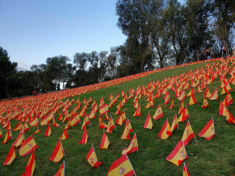 Colocan 53.000 banderas en Madrid en homenaje a las víctimas del Covid-19 (1)
