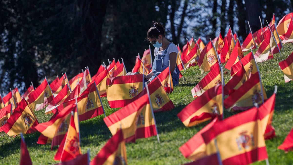 Colocan 53.000 banderas en Madrid en homenaje a las víctimas del Covid-19 (2)