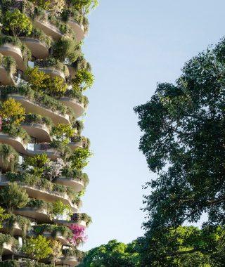 Koichi Takada y una torre en Australia que es un verdadero bosque urbano  (2)
