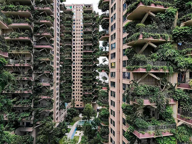 Qiyi City Forest Garden en Chengdu (1)
