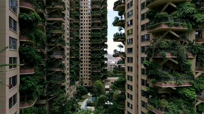 Qiyi City Forest Garden en Chengdu (3)