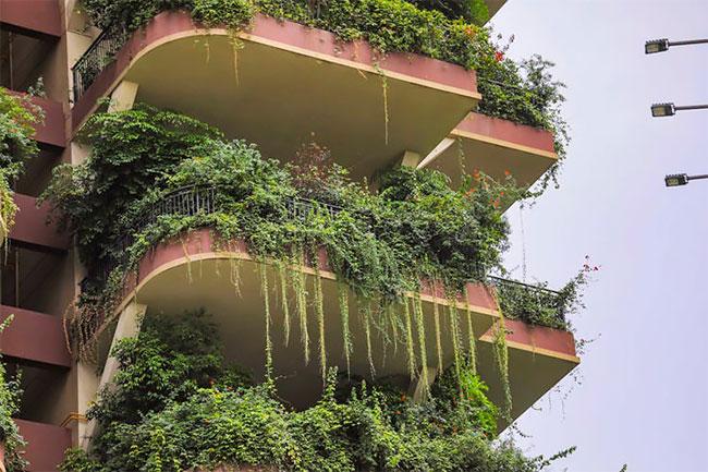 Qiyi City Forest Garden en Chengdu (7)