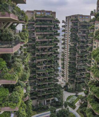 Qiyi City Forest Garden en Chengdu (8)