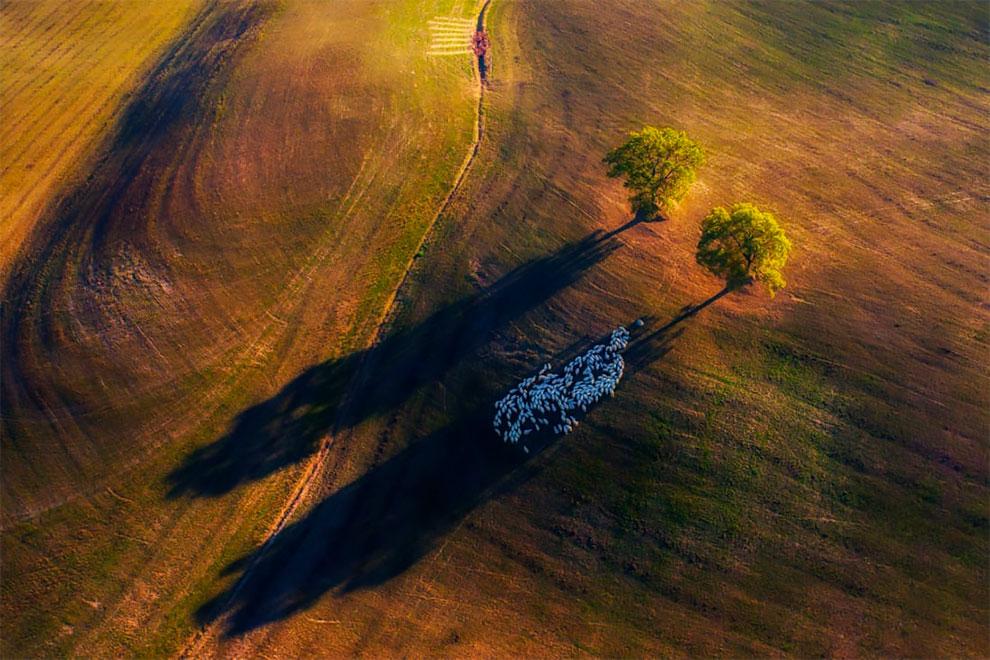 Marek Biegalski Drone Photo Awards