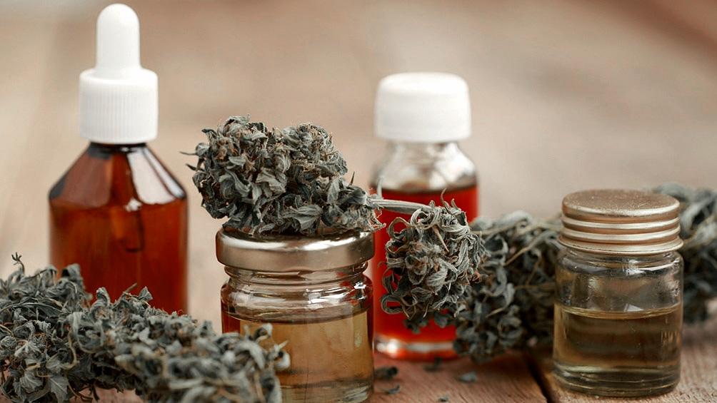 Cannabis el Gobierno legalizó el autocultivo para uso medicinal y la venta de aceites en farmacias (1)